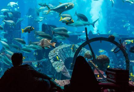 Best Underwater Hotels in the World