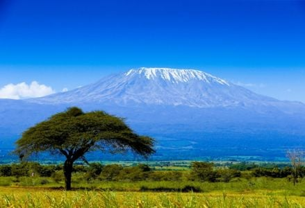 Exciting Things to Experience in Tanzania