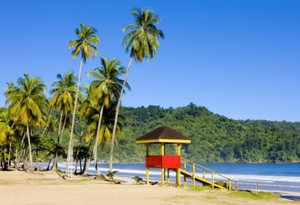 Discover Trinidad and Tobago