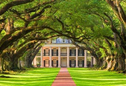 Titillating Adventure Awaits in Louisiana