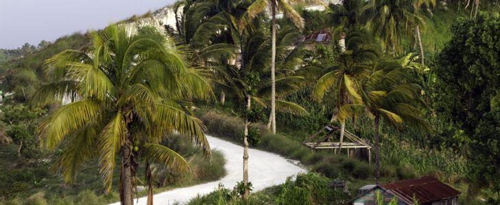 Fall in Love With Beautiful Haiti