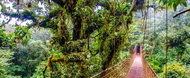Exciting Ways to Experience Costa Rica