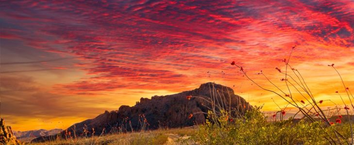 Top 10 Things to Do in Big Bend National Park