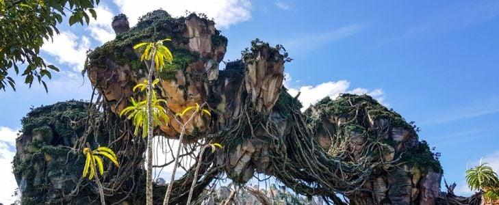 Top 10 Attractions at Animal Kingdom Disney World