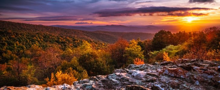 Discover the Highlights of Shenandoah National Park