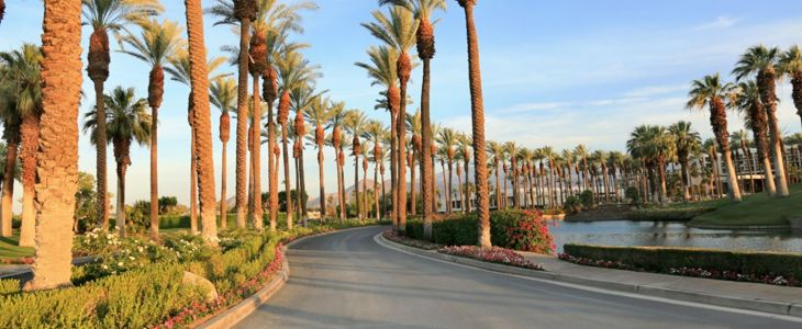The 10 Best Things to Do in Palm Springs on Your Next Trip