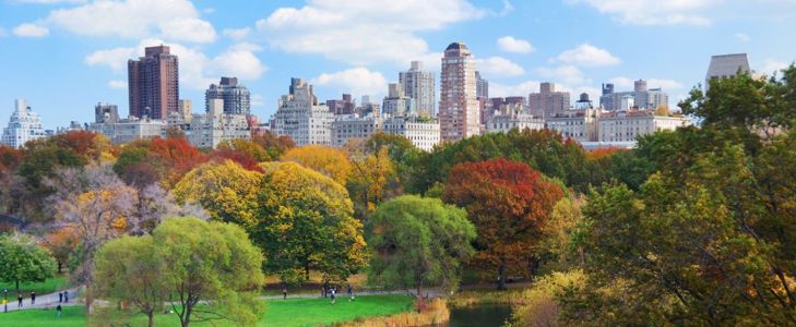 10 Fun Things to Do in Central Park