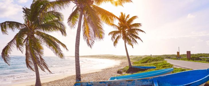 Amazing Things to Do in Cozumel