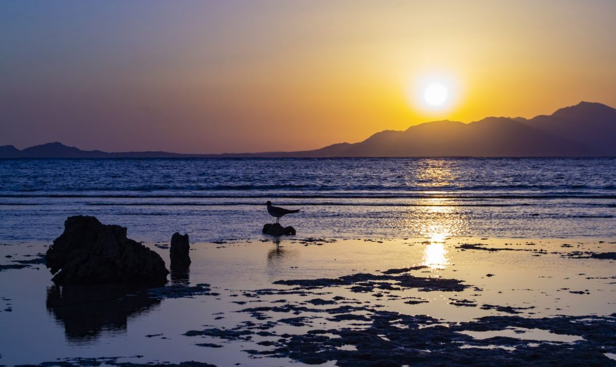 Sunrise over Tiran island, Saudi Arabia