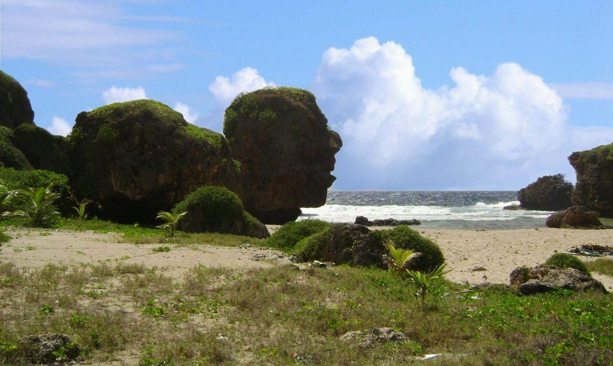 Old Man by the Sea, Saipan