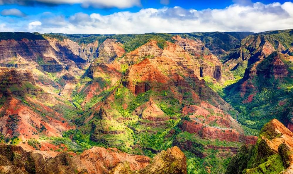 Waimea Canyon vista hawaii