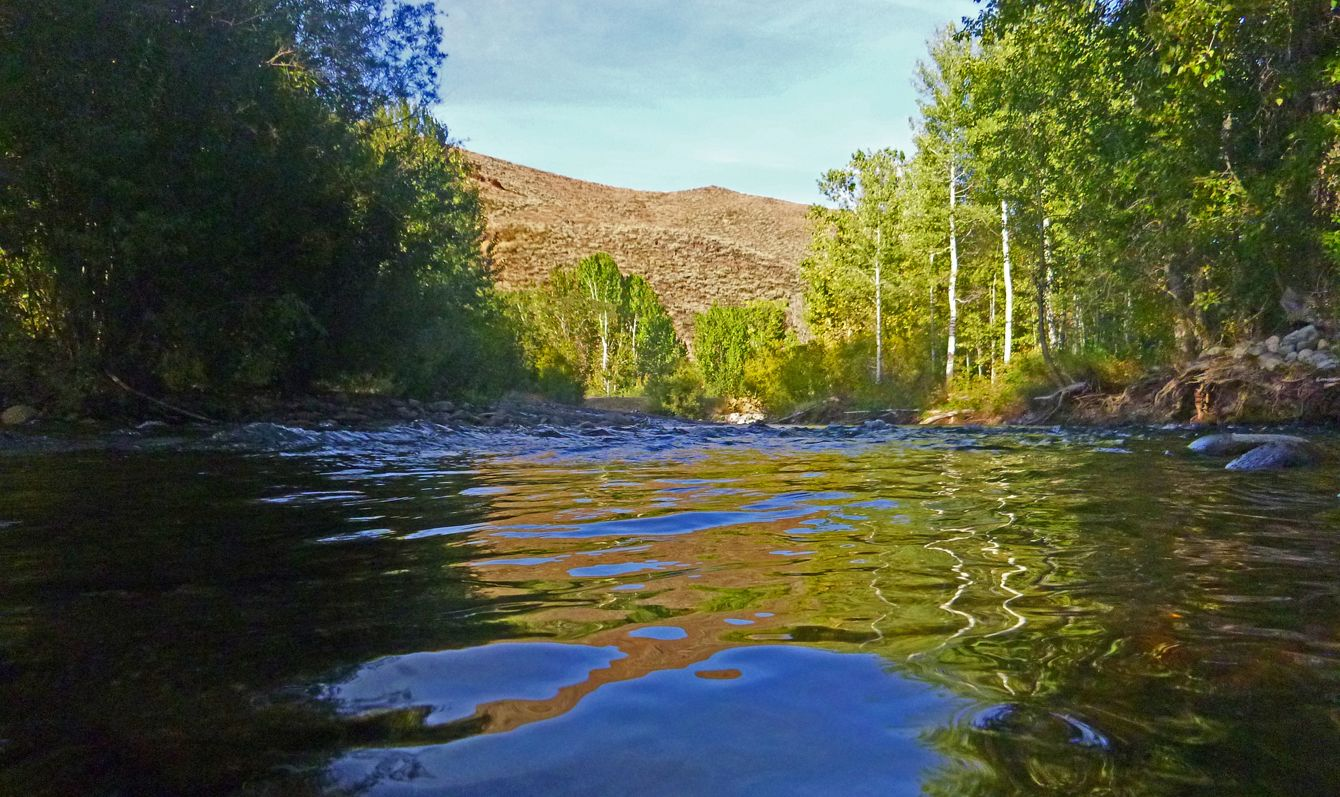 Big Wood River Idaho