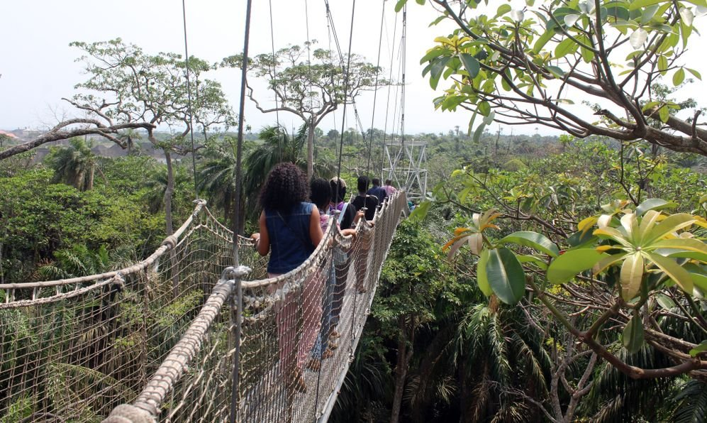 Lekki conservation Center, Lagos, Nigeria. Fun seekers atop the africa's longest canopy walkway