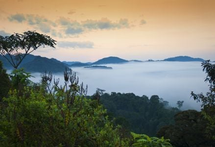 Find Adventure in Rwanda