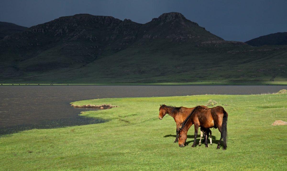 Horseback riding is a popular activity at Bokong Nature Reserve.