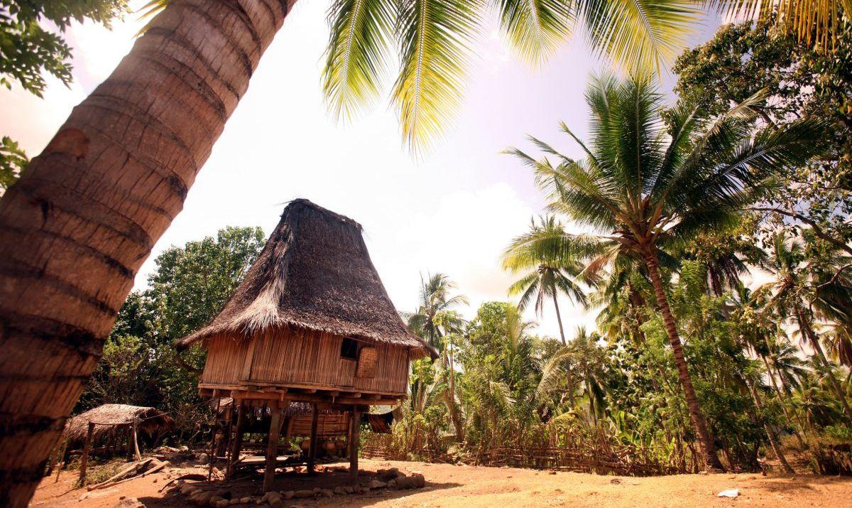 Traditional village homes of Timor-Leste.