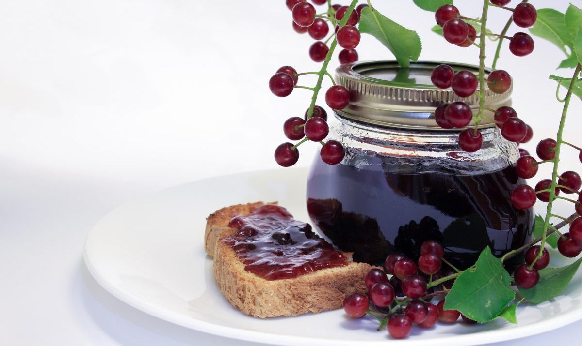 montana chokecherries jam
