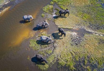 Plan Your Trip to Botswana