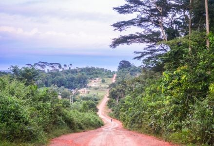 Don't Miss Out on Liberia