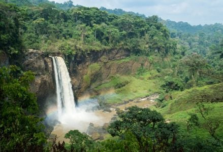 Explore the Unknown in Cameroon
