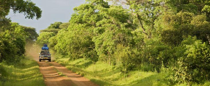 Go Off the Beaten Path in Democratic Republic of the Congo