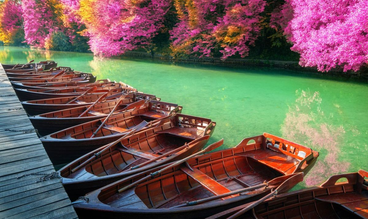 Boats docked in the Plitvice Lakes
