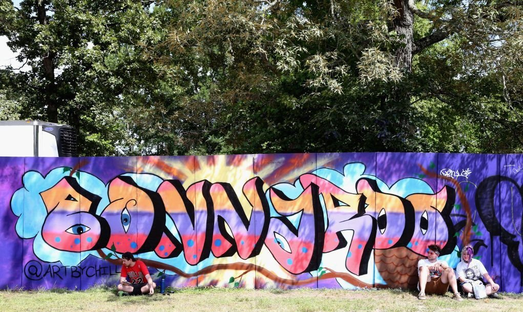 Gorgeous Bonnaroo graffiti