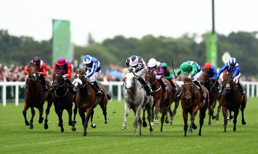 Horse races.