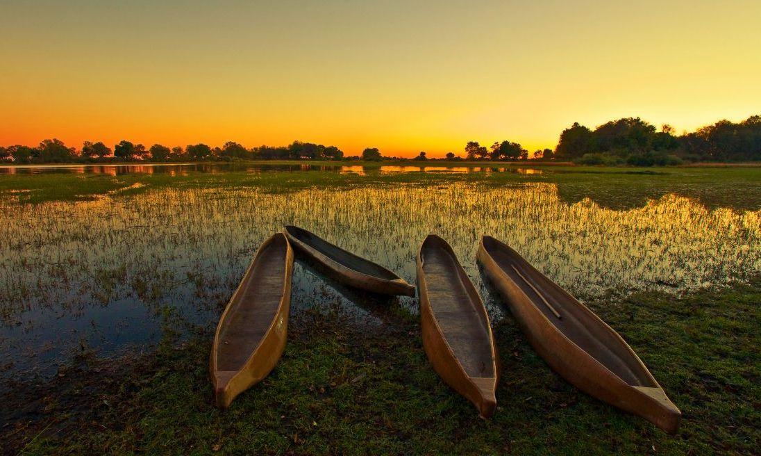 Four empty canoes in the Okavango Delta in Botswana