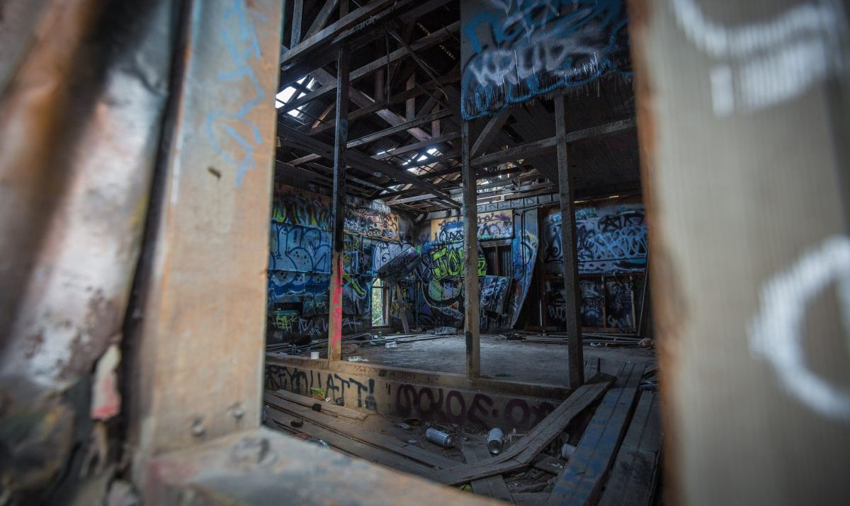 Local graffiti artists have created a makeshift art gallery inside the Old Los Angeles Zoo.