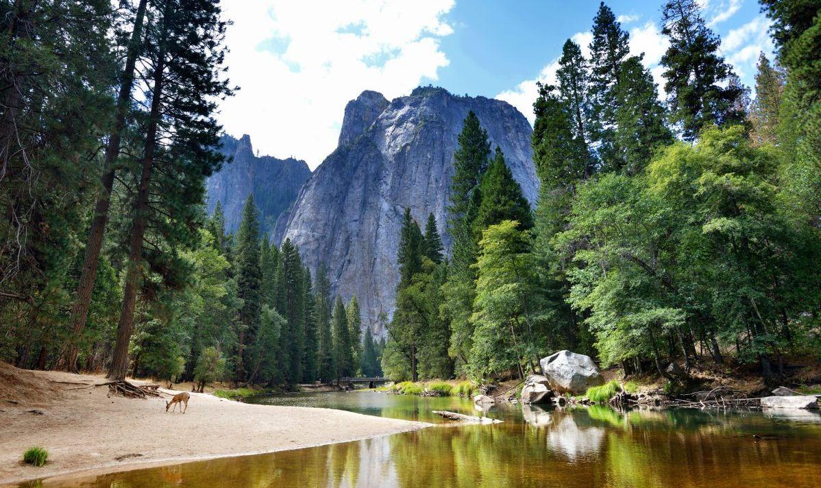 Yosemite valleys wilderness