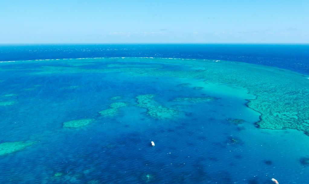 Coral Banks, part of the Great Barrier Reef