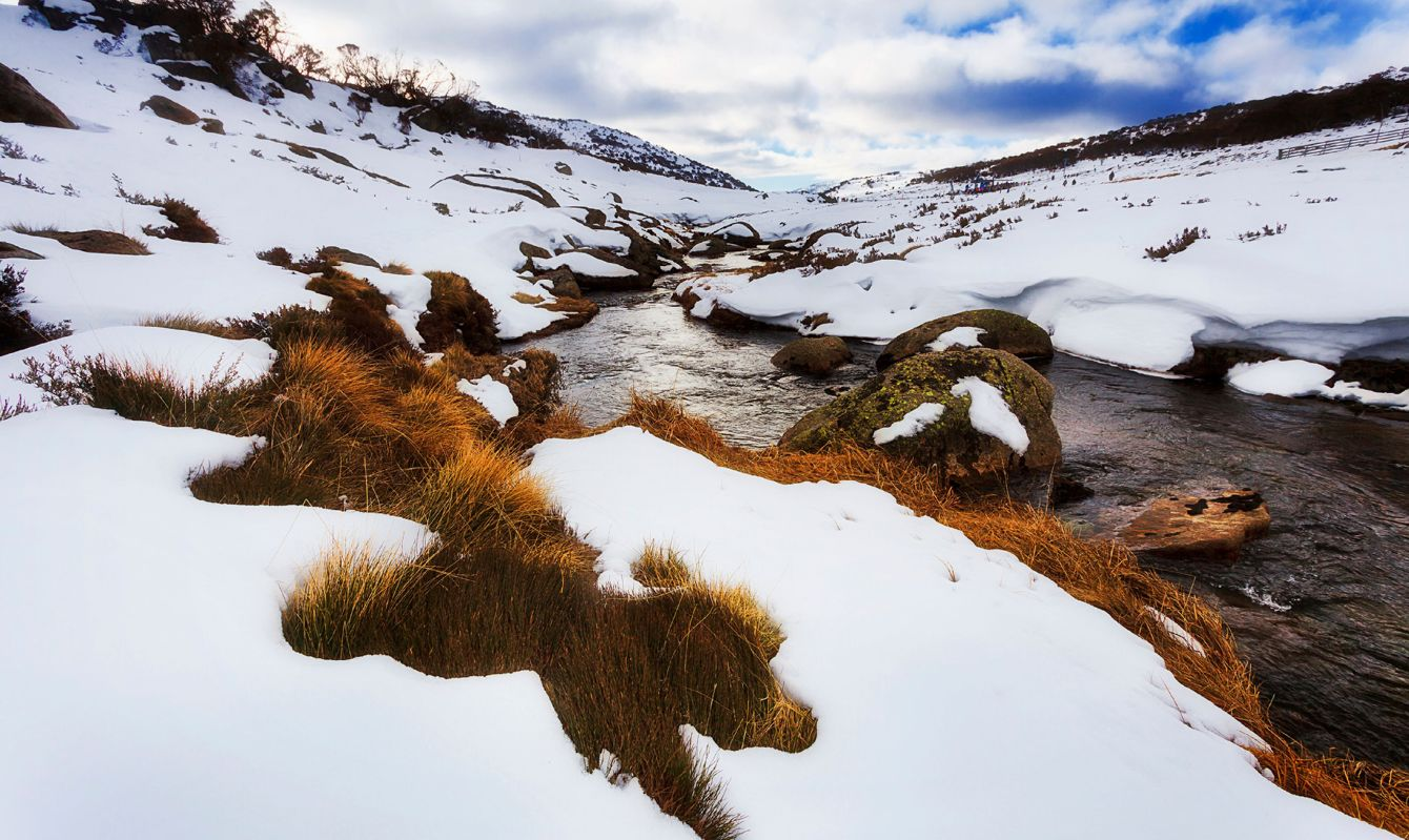 Perisher valley small running river through perisher valley in Snowy Mountains national park of NSW, Australia, covered by white snow.