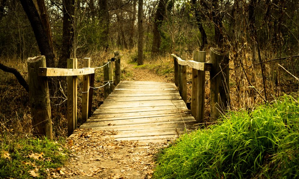 Path in River Legacy Park in Arlington, TX