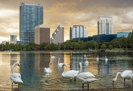 Downtown Orlando: Excitement Beyond the Big Parks