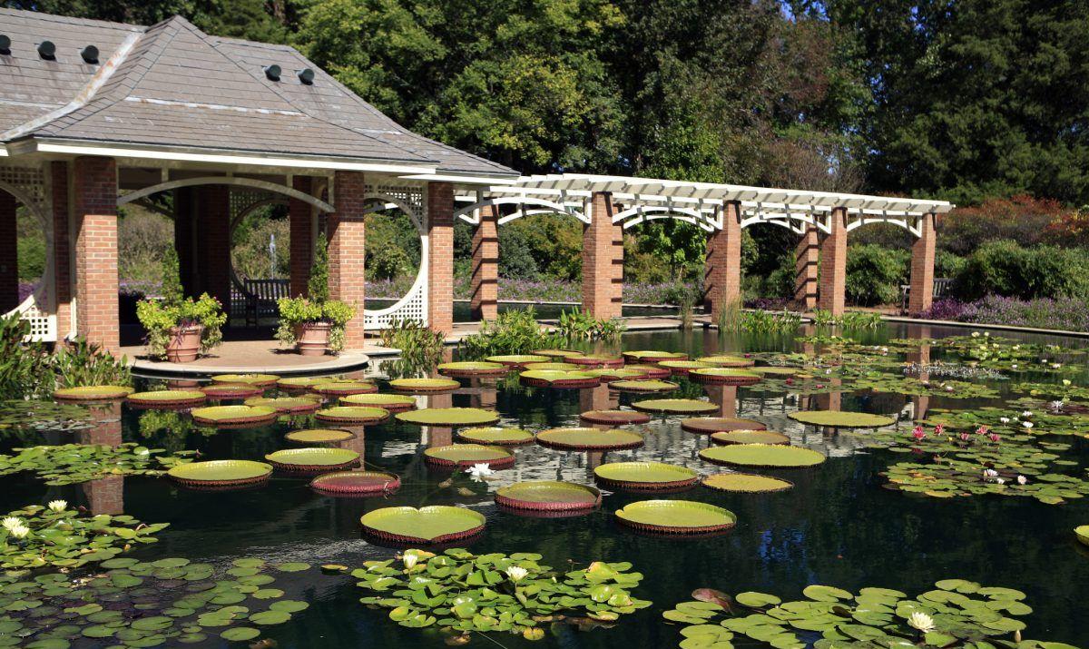 Botanical Garden - Huntsville AL