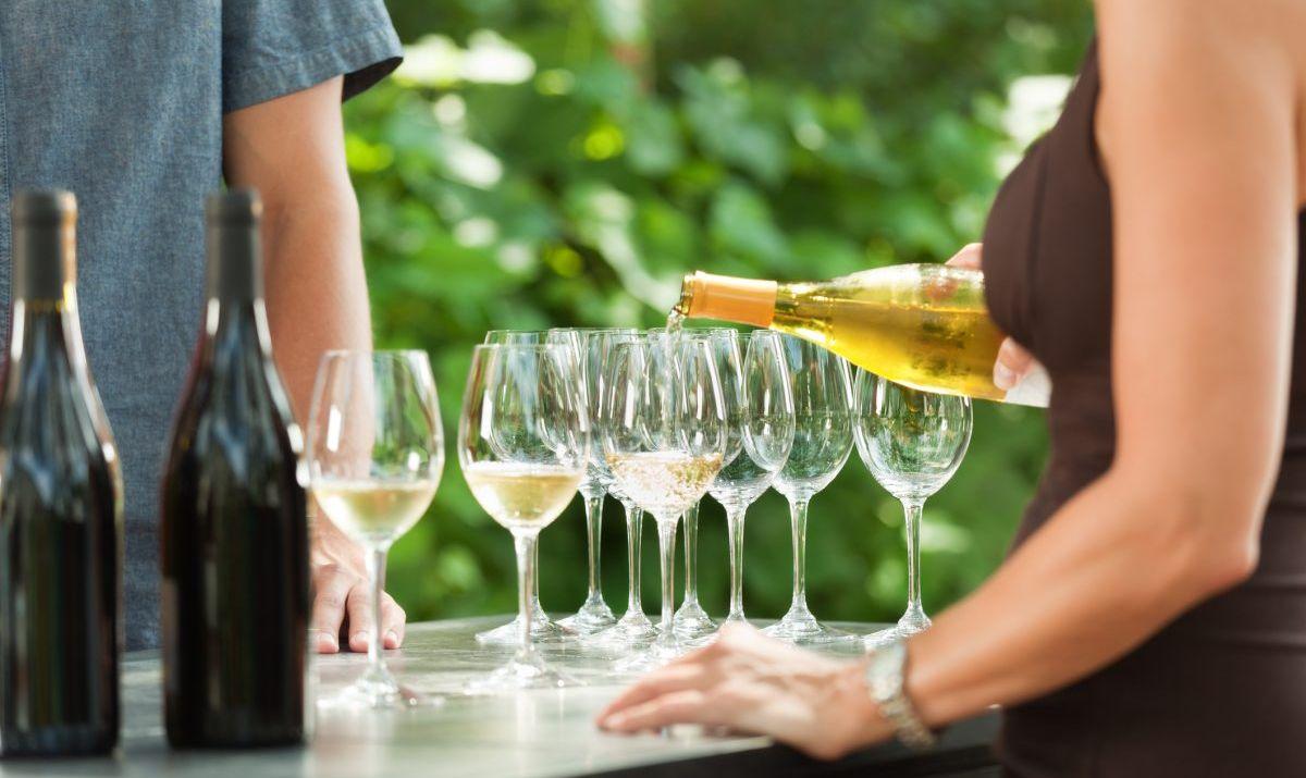 Wine among the vineyards