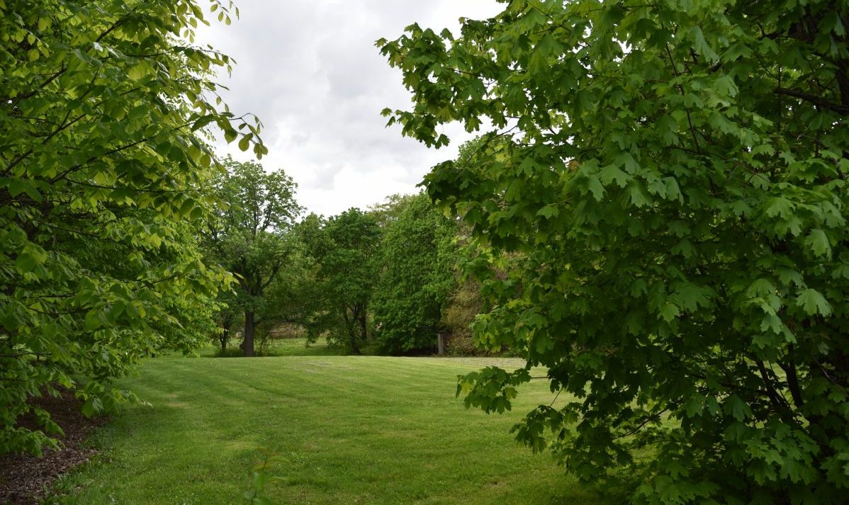 The Greenbelt is a crown jewel of Staten Island, also known as the borough of parks.