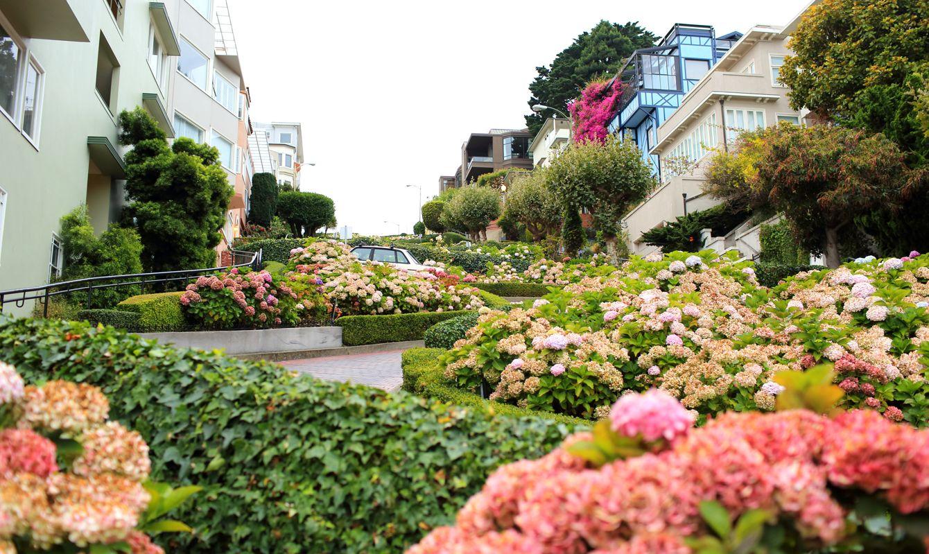 Lombard Street of San Francisco