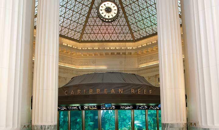 aquarium chicago atractions