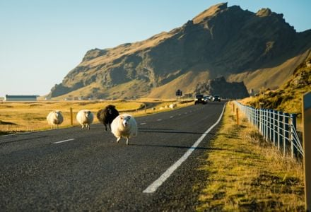 The Best European Road Trips for Adventurous Travelers