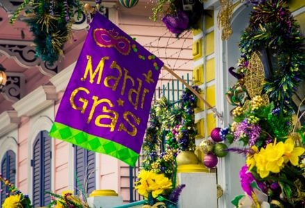 The Mardi Gras Survival Guide