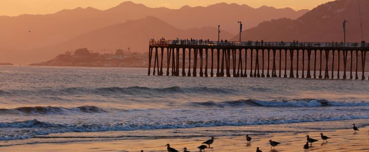 Explore the Natural Beauty of Pismo Beach