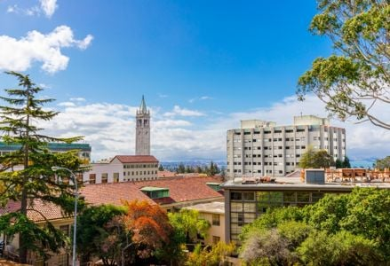 Experience Arts, Eats and Academia in Berkeley