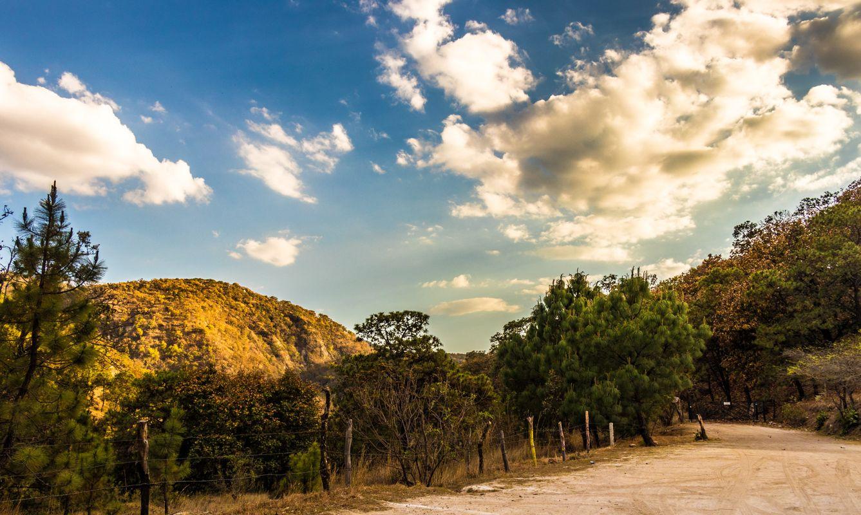 Guadalajara y su bosque de la eterna primavera