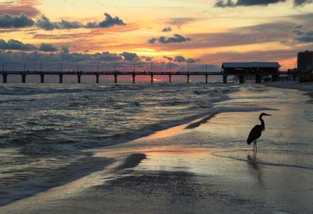 Prime Destinations in Orange Beach, Alabama