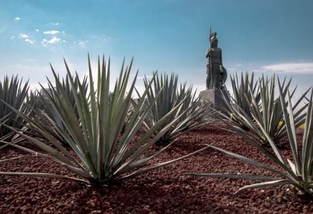 """Guadalajara: Mexico's """"Pearl of the West"""""""