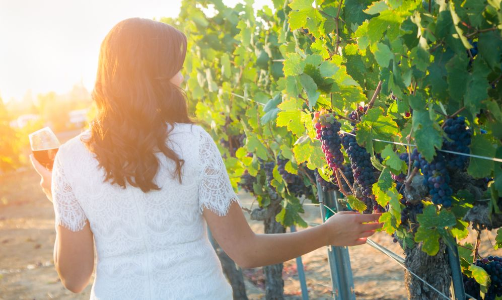 Young Adult Woman Enjoying Glass of Wine Tasting Walking In The Vineyard.