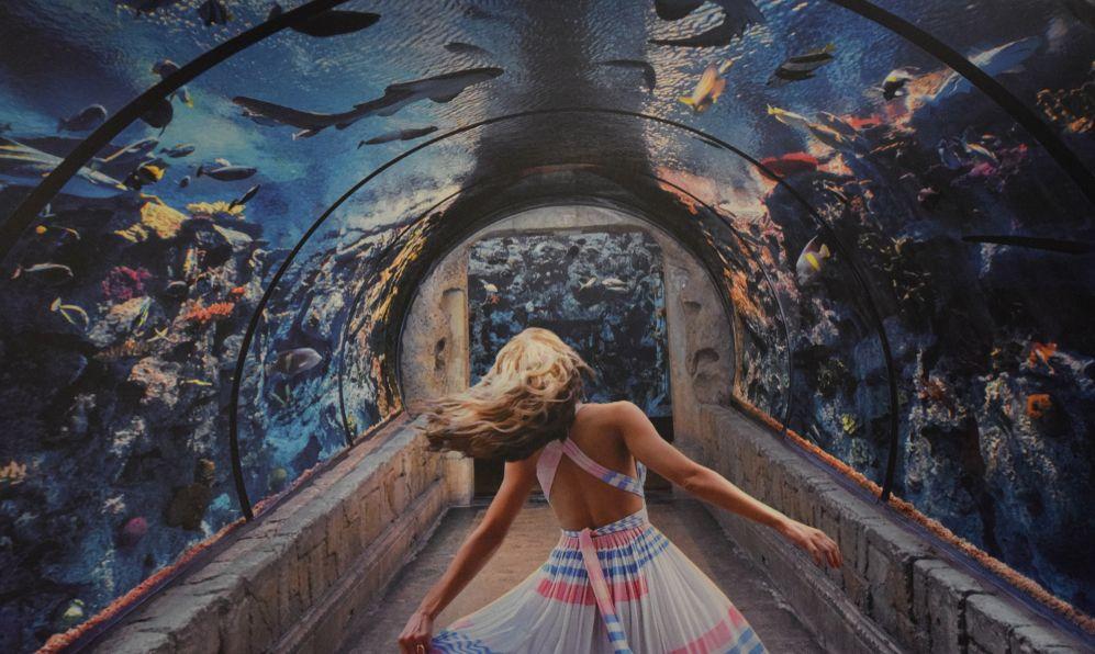 Shark Reef Aquarium, attraction at Mandalay Bay Hotel and Casino, in Las Vegas, Nevada.