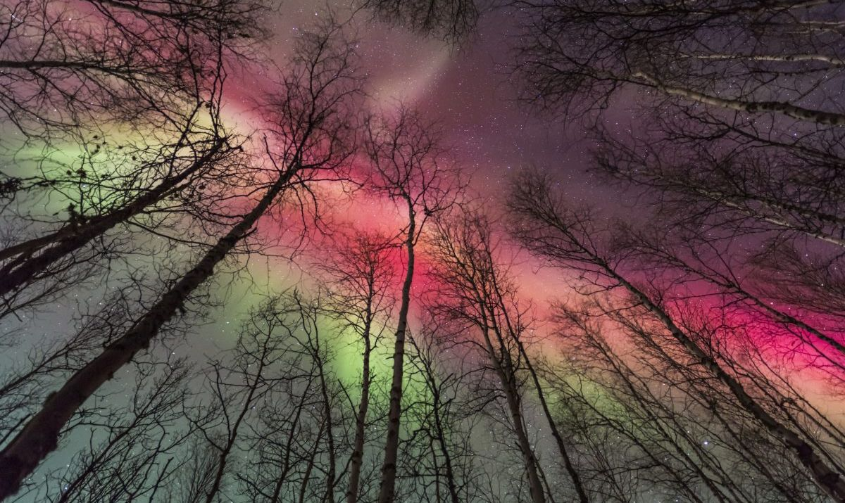 aurora borealis northern lights fairbanks